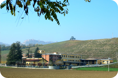 Image of the Beni di Batasiolo farm - Cantina24.