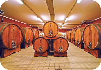Wine storage at Franco Pacenti.